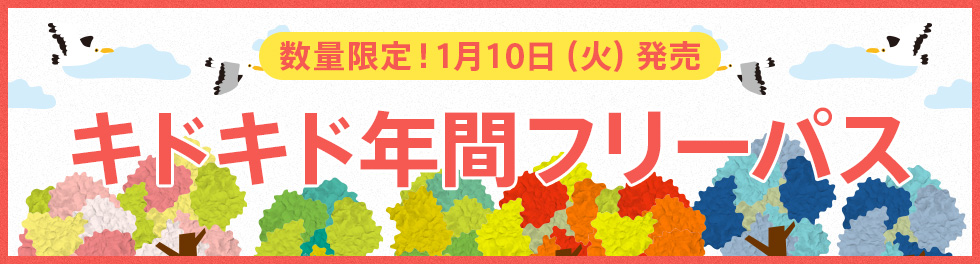 数量限定!1月10日(火)発売 キドキド年間フリーパス発売