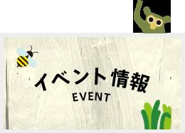 3月開催イベントのお知らせ