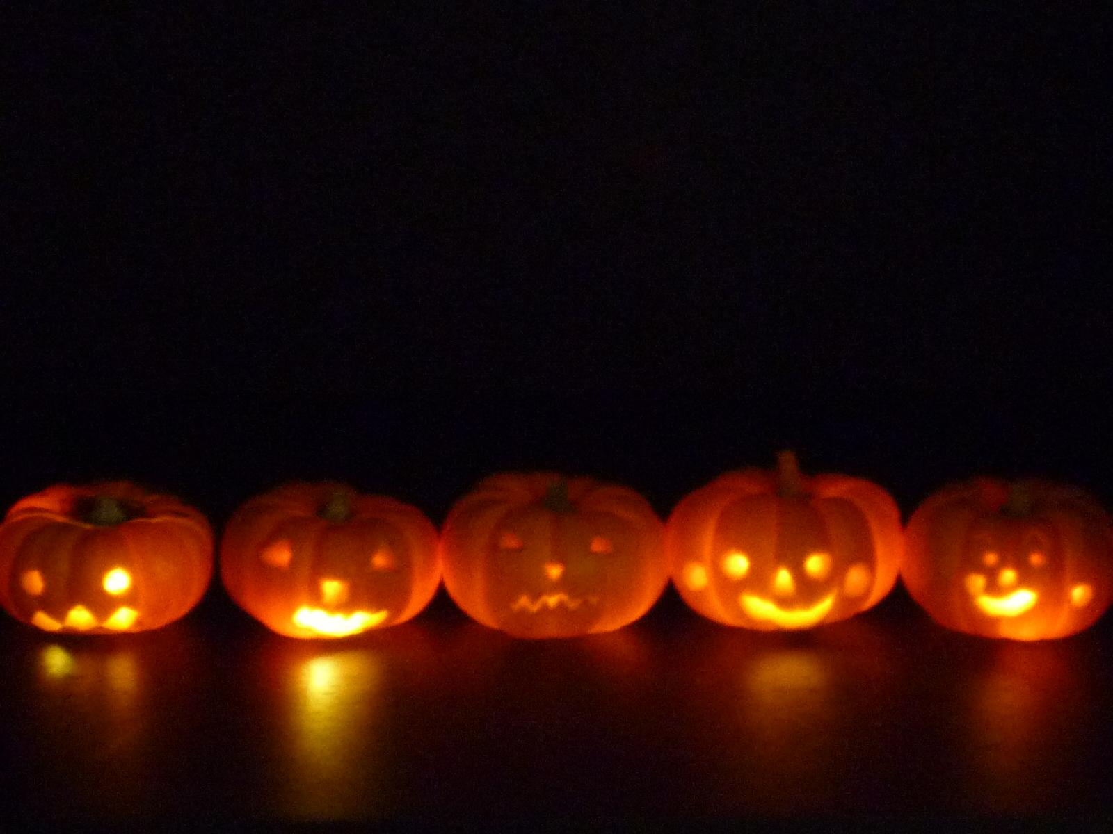 【お知らせ】特別ワークショップ 本物かぼちゃでジャック・オ・ランタンづくり