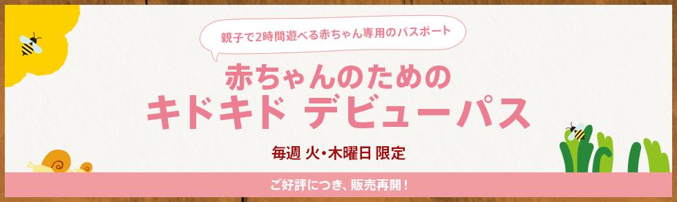 9月5日(火)から販売再開!「デビューパス」