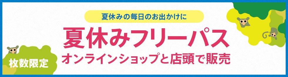 夏休みパス販売決定!